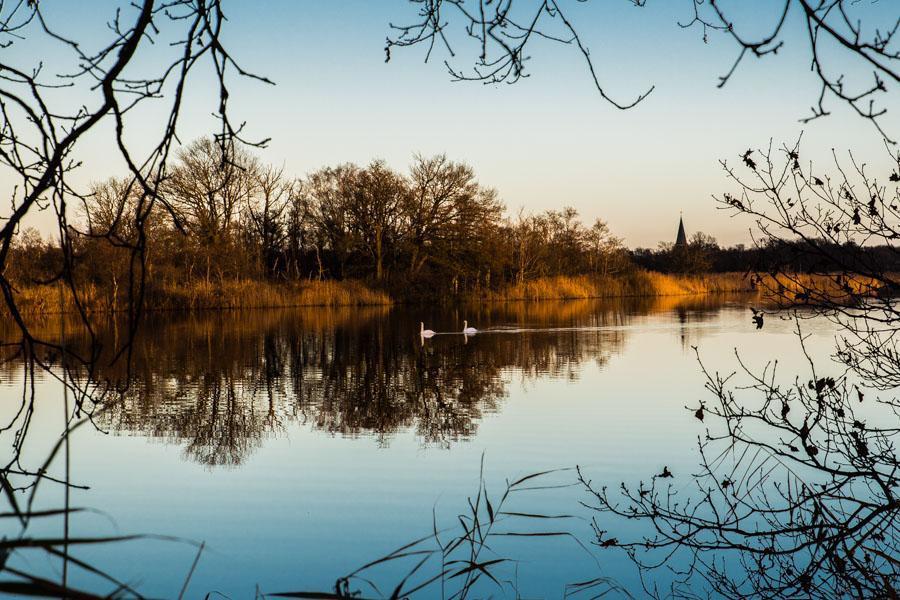 Noord-Hollandpad etappe 12 : Wandeling van Abcoude naar u2019s-Graveland