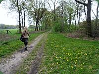 blaffen Een korte wandeling in een mooi park