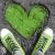 Lofzang op Groene Wissels