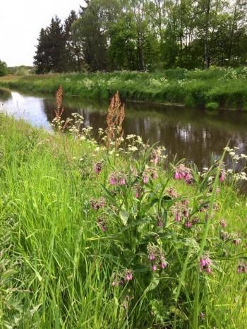 Wandel in Brabant: tweedaagse wandeling in de achtertuin van Den Bosch