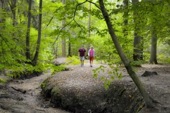 Wandelaars kiezen Hof van Espelo als mooiste wandeling van 2015