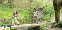 De vijf beste wandelapps op je smartphone