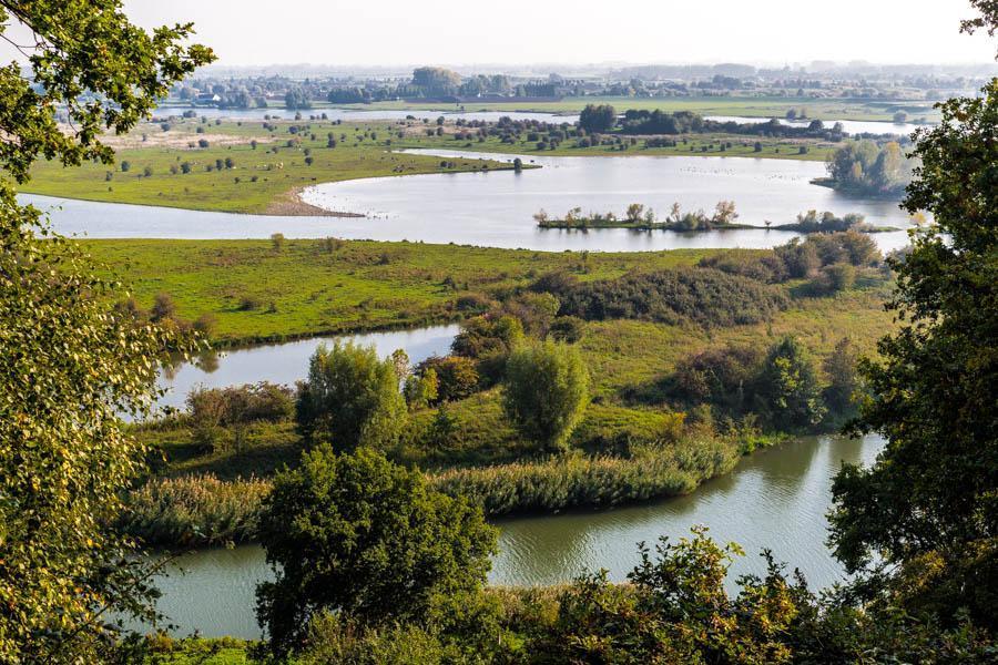 Rondwandeling Blauwe Kamer | Vogelrijk natuurgebied bij Rhenen
