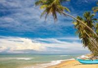 Mooiste rondreizen in Sri Lanka