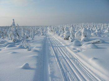 Mooiste wandel- en langlauf-vakanties in de Finse sneeuw
