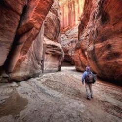 Mooiste wandelreizen in de Verenigde Staten
