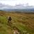 Dagboekje wandelvakantie Snowdonia in Wales | Mijn ervaringen