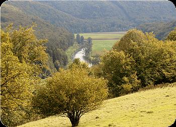 Altmühltal-Panoramaweg | Top Trails van Duitsland