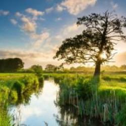Het Westerwoldepad | Nieuw streekpad in Oost-Groningen
