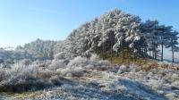 Ga winterwandelen door Nationaal Park Zuid-Kennemerland