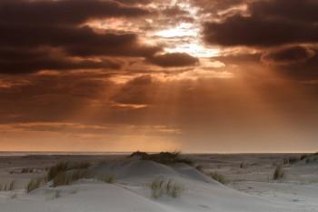Twee prachtige fotoreizen van SNP op Schiermonnikoog