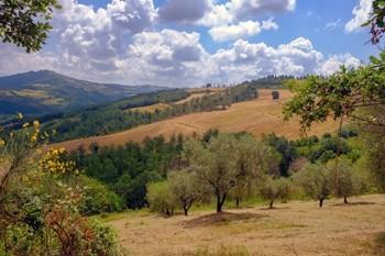 Franciscaanse voetreis 1 | Pelgrimstocht van Florence naar Assisi
