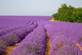 Mooiste actieve vakanties Frankrijk | Wandelen & fietsen