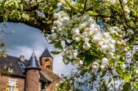 Top 10 mooiste wandelgebieden van Nederland