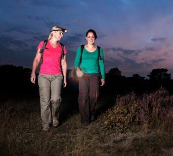 Midzomernachtloop 2017: magisch wandelen door de nacht