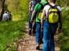 ns_wandeling_hemelse_berg_arnhem-22.JPG