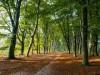 ns_wandelinge_belmonte-14.jpg