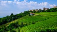Culinaire wandelvakantie Piemonte & Langhe | SNP Natuurreizen