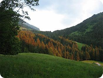 Tour des Bauges | Trektocht rond het Massif des Bauges