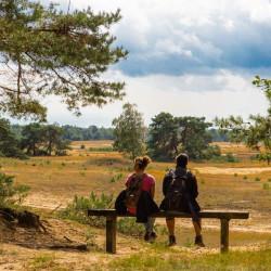 Onderzoek: Nederlanders zijn koplopers in het wandelen