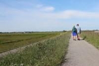 Nieuw wandelevenement Nierdaagse: zet grote stappen voor de Nierstichting