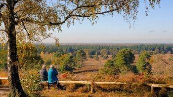 Mooiste wandeling 2020: Wandelsporen Holten-Nijverdal